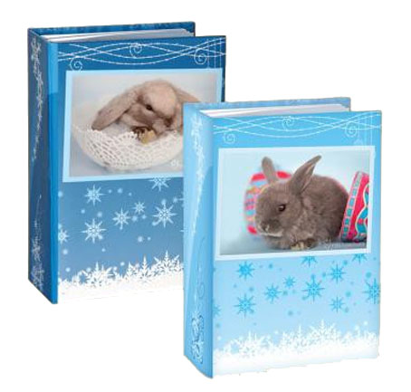 4R100memorhwinter rabbits12937 Фотоальбомы